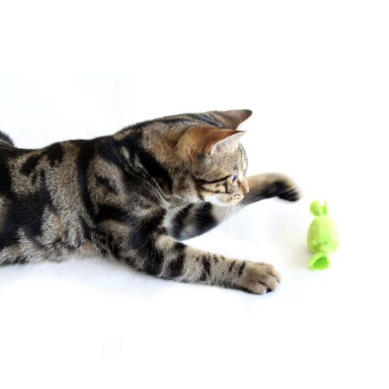 猫のおもちゃ[タフィーロール]フリース製