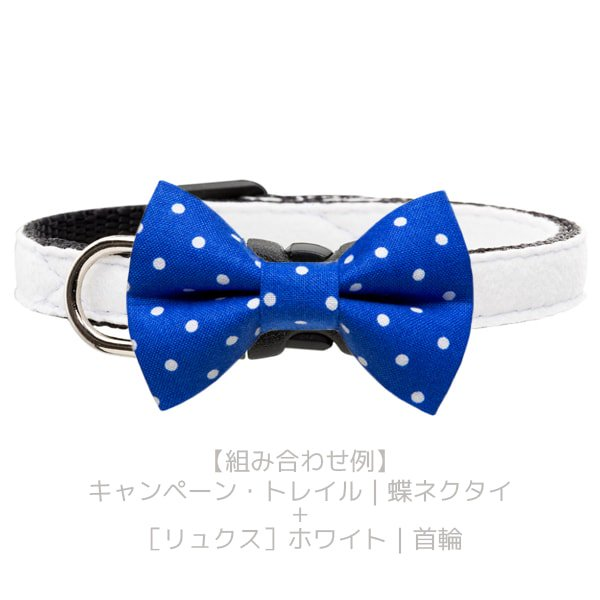 猫の首輪[Luxe]キャットカラー ウルトラスエード ホワイト