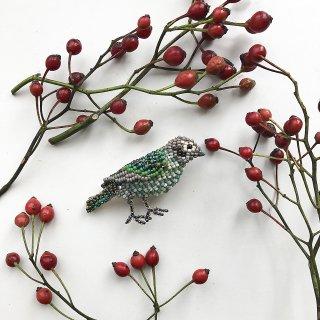 緑の小鳥(ミミグロネコドリ)