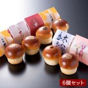 [期間限定]初夏の平井製菓あんパン食べ比べセット(5種類/6個入り)