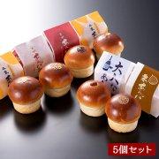 [秋季限定]平井製菓のあんパン食べ比べセット(5種類/5個入り)