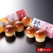 [期間限定]春の平井製菓あんパン食べ比べセット(5種類/5個入り)