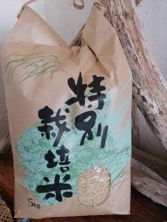 2020年東神楽産特別栽培米ゆめぴりか(玄米)