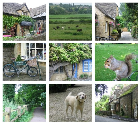 about COTSWOLDS