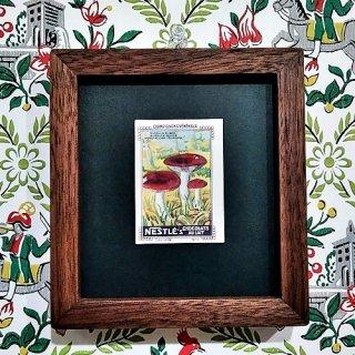 キノコの額「Vintage Nestle Card 1920's」 (R)