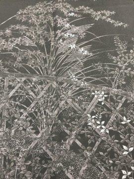 正絹 袷の色留袖 ☆☆☆ 【C/M/W】 (66/162.5/46) 中古 三つ紋付き 【作家物】