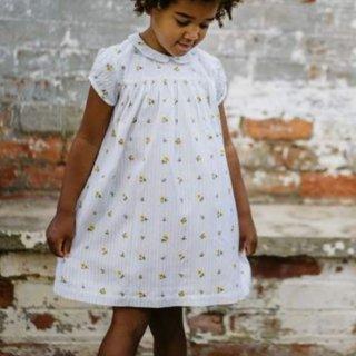 little cotton clothes hera dress clover floral seersucker