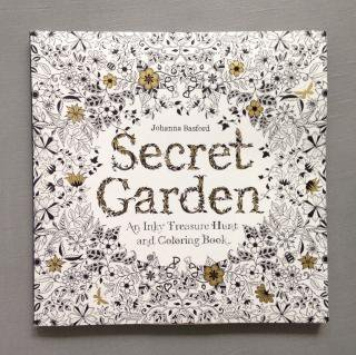 SecretGarden An Inky Treasure Hunt and Coloring Book