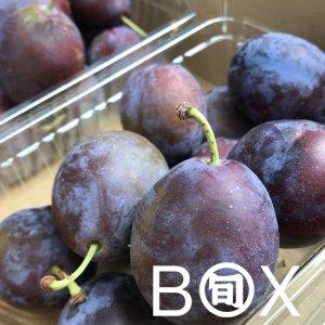 旬八ボックス(北海道 生プルーン1箱(約800g)/2箱(約1.6kg))※送料込・クール代別途