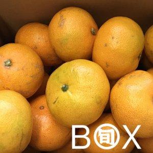 旬八ボックス(宮崎県 橘孝園さんの早生みかん「太陽の雫」 2kg〜4.5kg)※送料込