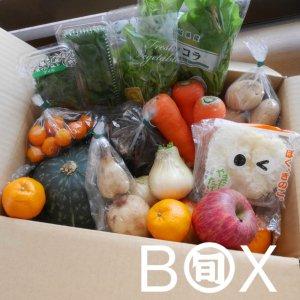 旬八ボックス(旬の野菜・果物詰め合わせ 9品目以上)※送料込・お届け地域限定 〈大崎広小路店発送〉