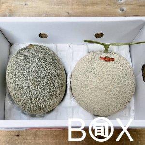 旬八ボックス(2色の国産メロン食べ比べ(5Lサイズ:青肉/赤肉セット))※送料込み