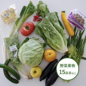 【大容量】旬八ボックス(旬の野菜・果物詰め合わせ 15品目以上)※お届け地域限定・送料込・クール料金別途