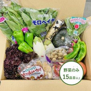 【大容量】旬八ボックス(旬の野菜詰め合わせ(野菜のみ) 15品目以上)※送料込・クール料金別途