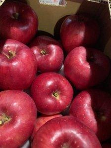 旬八ボックス(蜜あり品種!酸味甘味のバランスよい ひめかみりんご 北海道余市町産 5kg, 10kg)※送料込