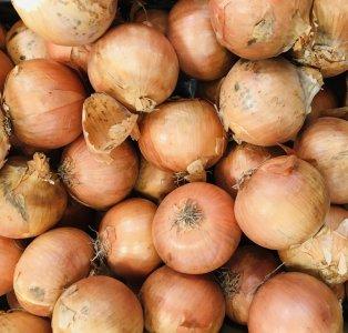 旬八ボックス(こだわりの土から甘くて美味しい!つちから農場さんの産直玉ねぎ 北海道新篠津 2.2~2.5kg / 4.5~5.0kg)※送料込