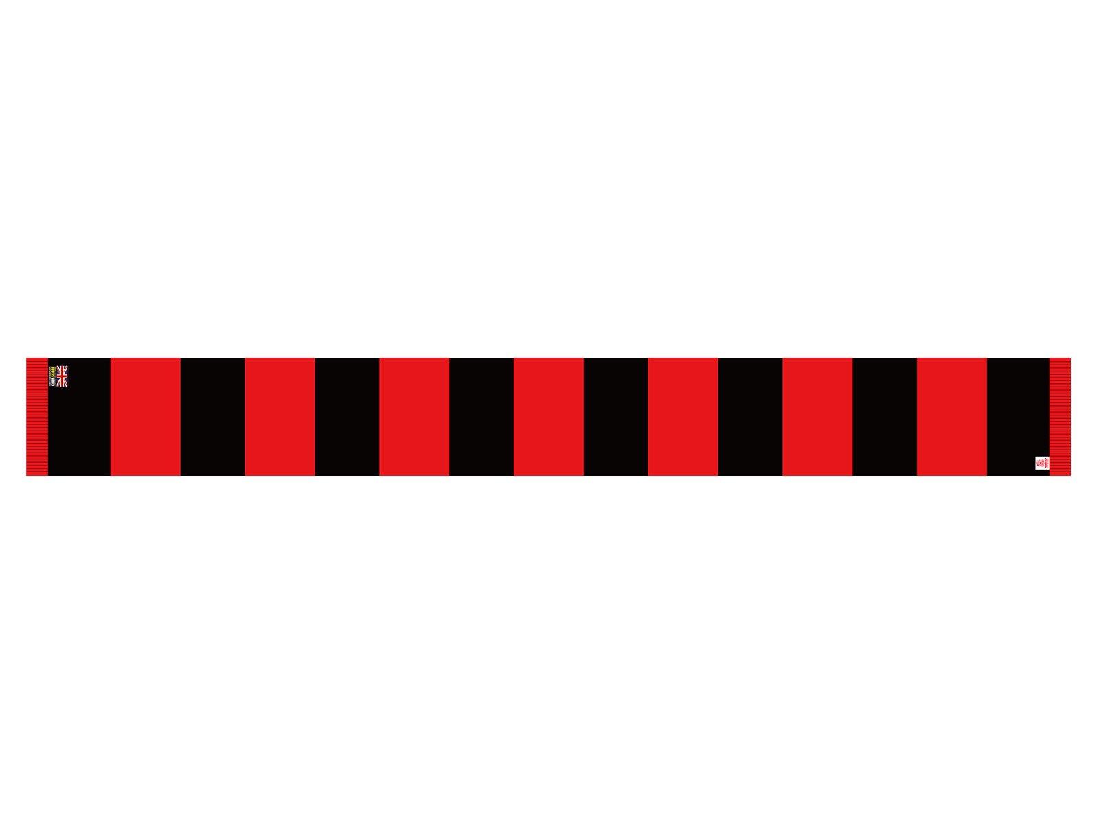 英国製レスターBARスカーフ
