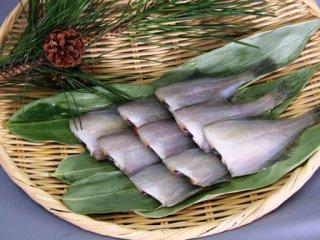 干物 日本海の魚 肴 鰈 口細カレイ 一夜干し