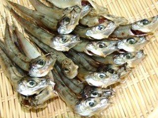 干物 日本海の魚 新潟 魚 肴 ニギス ギス 一夜干し