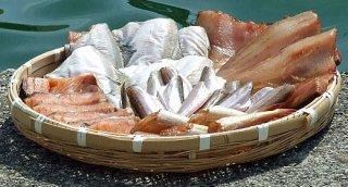 干物 日本海の魚 新潟 魚 肴 おまかせ 天ぴ屋おすすめセットS