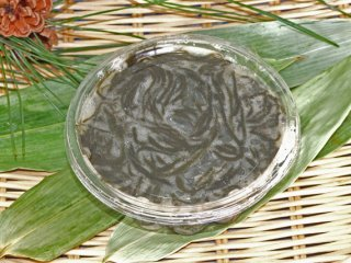 海草 海藻 日本海 塩漬け 太もずく