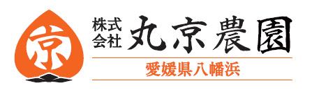 日本一大きい柿・愛媛県八幡浜市特産・丸京農園の富士柿『媛富士HIME-FUJI』