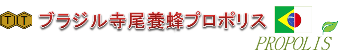 グリーンプロポリス発見者がつくるグリーンプロポリス専門のブラジル寺尾養蜂日本支社