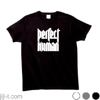 PERFECT HUMAN パーフェクトヒューマン Tシャツ