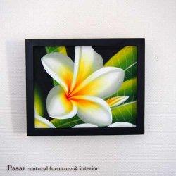 PURUMERIA WHITE KECIL 22.5×27.7(cm)