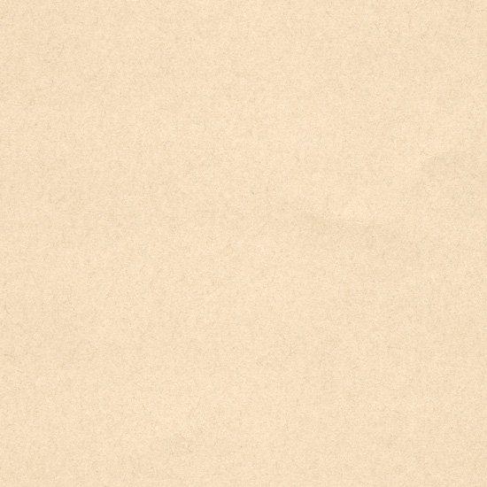 手漉和紙 越前手漉鳥の子紙 白茶...