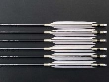【特価品・最大全長88cm】遠的カーボン矢 6本組 ミズノSST 65-15 EH グースナタ羽