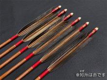 カーボン矢 6本組 ハヤブサ8025 黒手羽 (1)