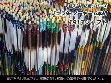 【新入部員応援】ジュラ矢 6本組 1913 ターキー羽