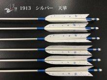 【矢龍】ジュラ矢 6本組 1913 シルバー ターキー 天華