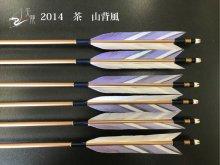 【矢龍】ジュラ矢 6本組 2014 茶 ターキー 山背風