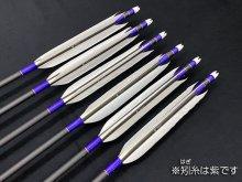 遠的カーボン矢 6本組 匠7517 グースナタ羽 (1)