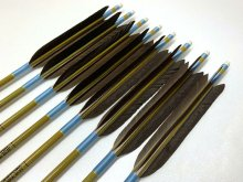 【ワケあり特価矢】カーボン矢 8本組 イーストンウッドカーボン 80-23 黒手羽 (2)