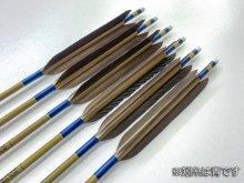 【ワケあり特価矢】カーボン矢 6本組 イーストンウッドカーボン 76-20 黒手羽 (10)