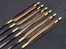 カーボン矢 6本組 雷槌(いかづち)八〇式BK 黒手羽 (1)