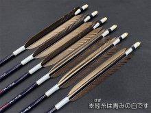 カーボン矢 6本組 雷槌(いかづち)八〇式JB 黒手羽 (1)