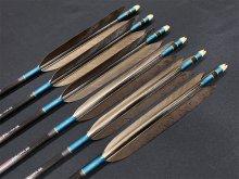 カーボン矢 6本組 雷槌(いかづち)八〇式BK 黒手羽 (2)