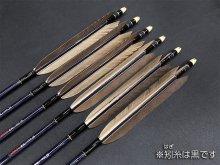 カーボン矢 6本組 雷槌(いかづち)八〇式JB 黒手羽 (2)