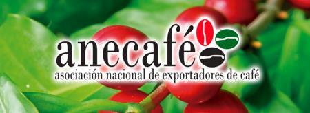 エクアドル 2015年ターサ・ドラーダ品評会 第2位 セルビオ・バルド