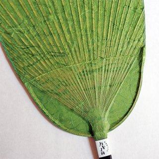 色和紙団扇(小判)|緑