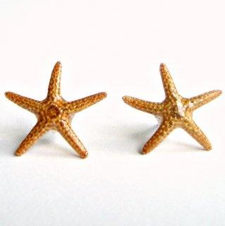 素材とサイズが選べる♪リアルスターフィッシュ ヒトデ シェル 貝殻 スタッズピアス