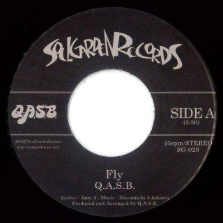 Q.A.S.B. - Fly