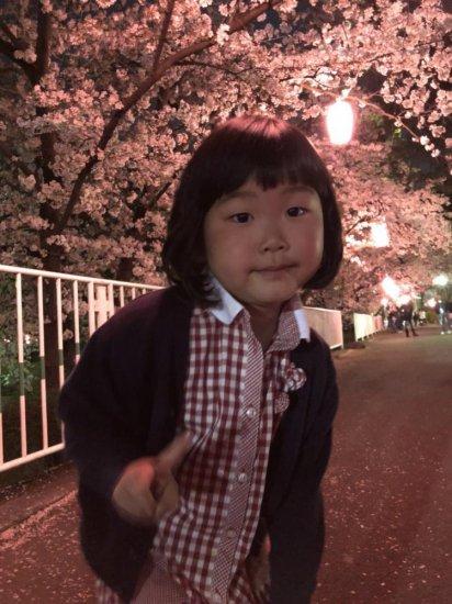3歳♪花見に行って来ました(*´▽`*)