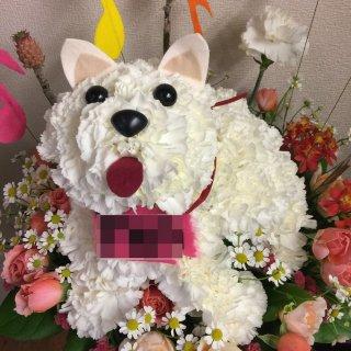 特別注文オリジナルアニマルアレンジ/全身お花の犬