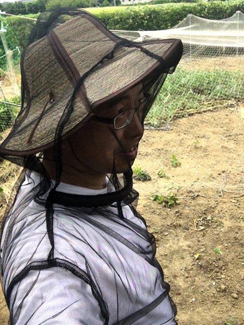 虫よけネットパーカー(クモの巣ガード)帽子を被って着るのがお薦めです。