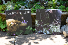 GARDENS LIFE 2 〈RIGHT〉